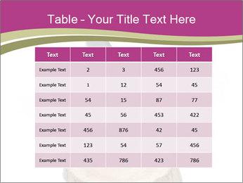 0000096554 PowerPoint Template - Slide 55