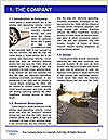 0000096555 Word Template - Page 3