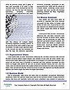 0000096555 Word Template - Page 4