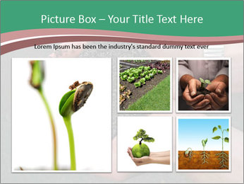 0000096556 PowerPoint Template - Slide 19
