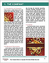 0000096557 Word Template - Page 3