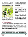 0000096557 Word Template - Page 4