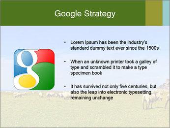 0000096558 PowerPoint Template - Slide 10
