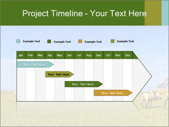 0000096558 PowerPoint Template - Slide 25