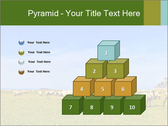0000096558 PowerPoint Template - Slide 31