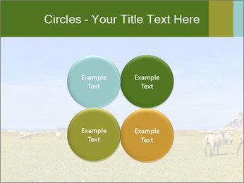 0000096558 PowerPoint Template - Slide 38