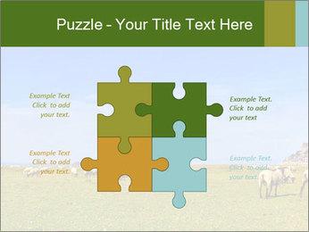0000096558 PowerPoint Template - Slide 43