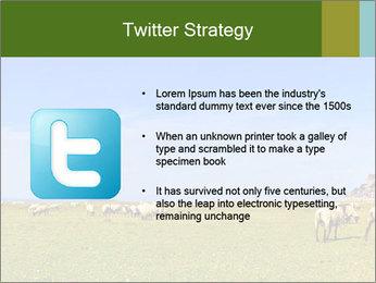 0000096558 PowerPoint Template - Slide 9