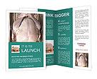 0000096559 Brochure Templates