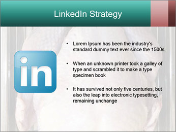 0000096559 PowerPoint Template - Slide 12