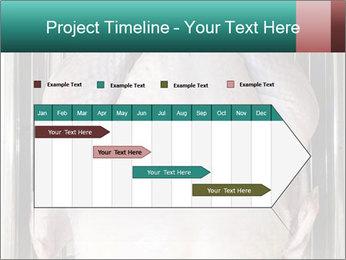 0000096559 PowerPoint Template - Slide 25
