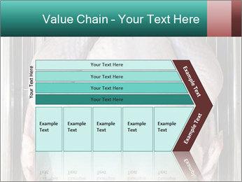 0000096559 PowerPoint Template - Slide 27