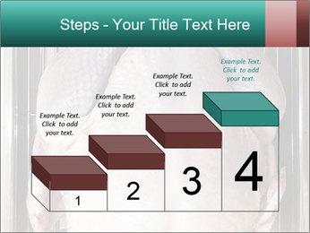 0000096559 PowerPoint Template - Slide 64