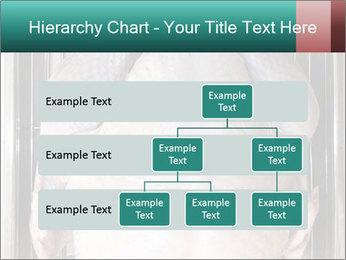 0000096559 PowerPoint Template - Slide 67