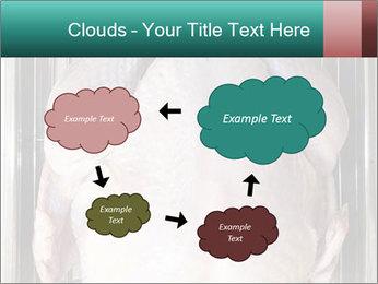 0000096559 PowerPoint Template - Slide 72
