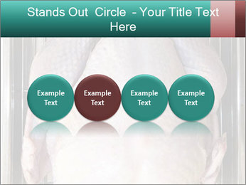 0000096559 PowerPoint Template - Slide 76