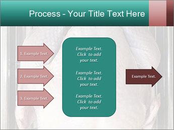0000096559 PowerPoint Template - Slide 85