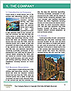 0000096570 Word Template - Page 3