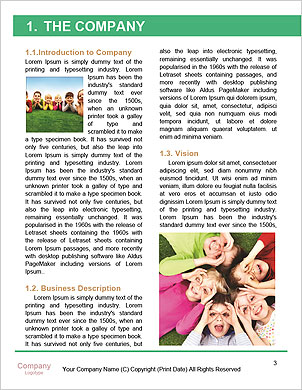 0000096571 Word Template - Page 3