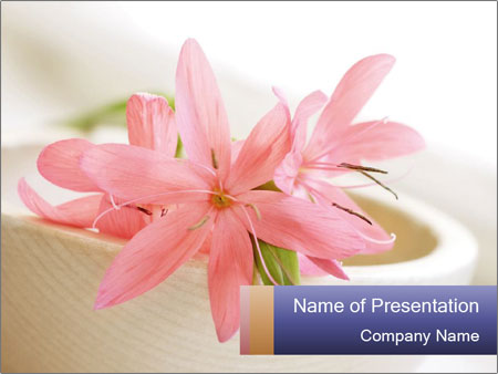 0000096575 PowerPoint Template