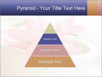 0000096575 PowerPoint Template - Slide 30