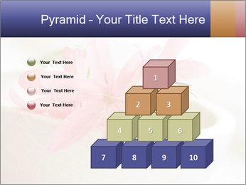 0000096575 PowerPoint Template - Slide 31