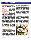 0000096575 Word Template - Page 3