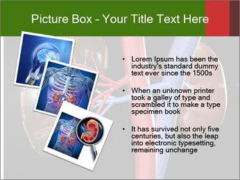 0000096577 PowerPoint Template - Slide 17