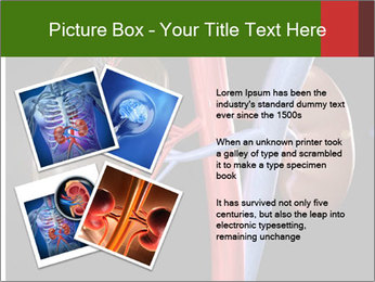 0000096577 PowerPoint Template - Slide 23