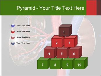 0000096577 PowerPoint Template - Slide 31