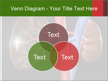 0000096577 PowerPoint Template - Slide 33