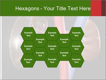 0000096577 PowerPoint Template - Slide 44