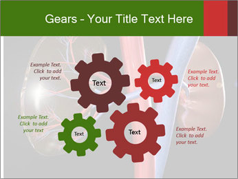 0000096577 PowerPoint Template - Slide 47