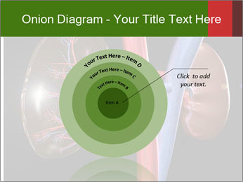 0000096577 PowerPoint Template - Slide 61