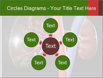 0000096577 PowerPoint Template - Slide 78