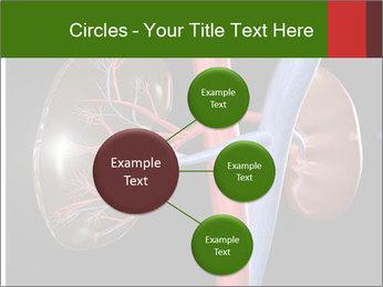0000096577 PowerPoint Template - Slide 79