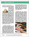 0000096582 Word Template - Page 3