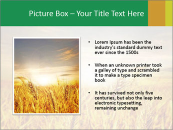 0000096589 PowerPoint Template - Slide 13
