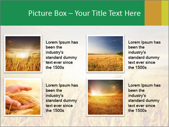 0000096589 PowerPoint Template - Slide 14