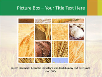 0000096589 PowerPoint Template - Slide 15