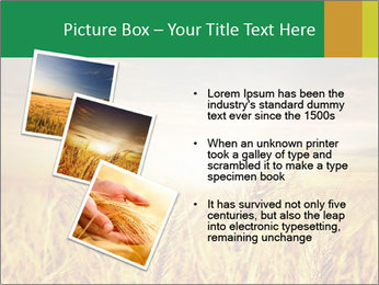 0000096589 PowerPoint Template - Slide 17