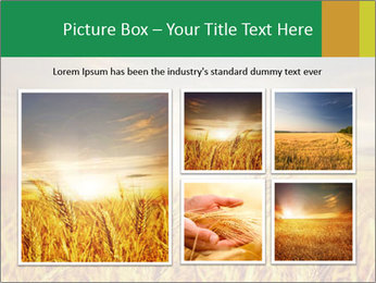 0000096589 PowerPoint Template - Slide 19