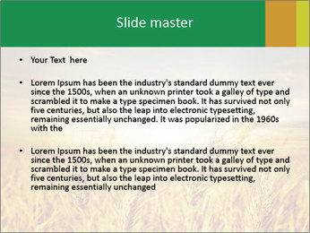 0000096589 PowerPoint Template - Slide 2