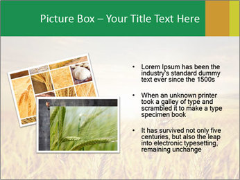 0000096589 PowerPoint Template - Slide 20