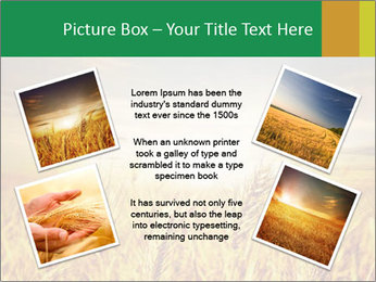 0000096589 PowerPoint Template - Slide 24