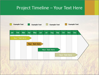 0000096589 PowerPoint Template - Slide 25