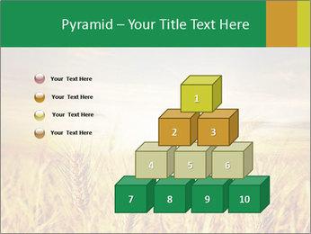 0000096589 PowerPoint Template - Slide 31