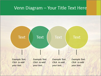 0000096589 PowerPoint Template - Slide 32