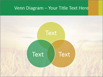 0000096589 PowerPoint Template - Slide 33