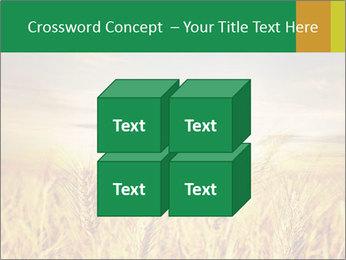 0000096589 PowerPoint Template - Slide 39